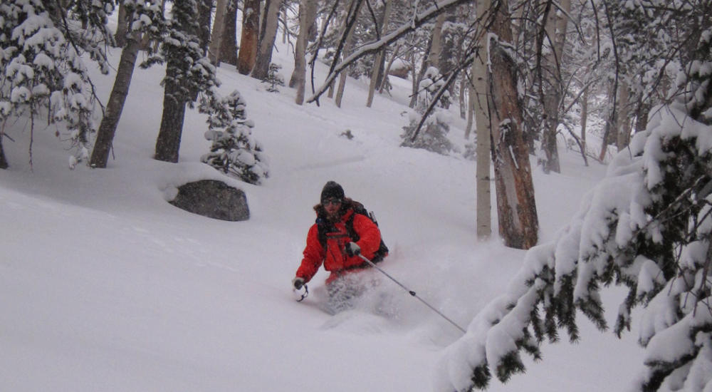 Tree skiing on a 7 day trip in Great Basin National Park, Nevada