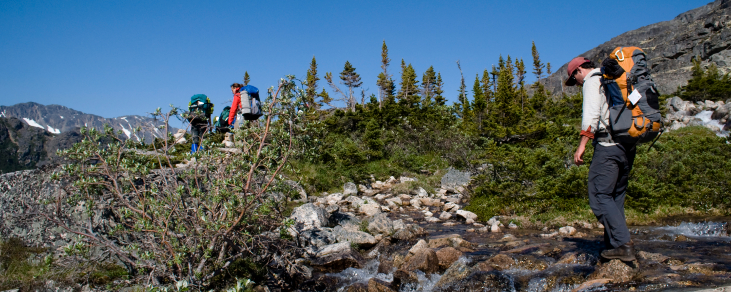 Hikers on the Chilkoot Trail enjoying a bluebird day crossing into Canada