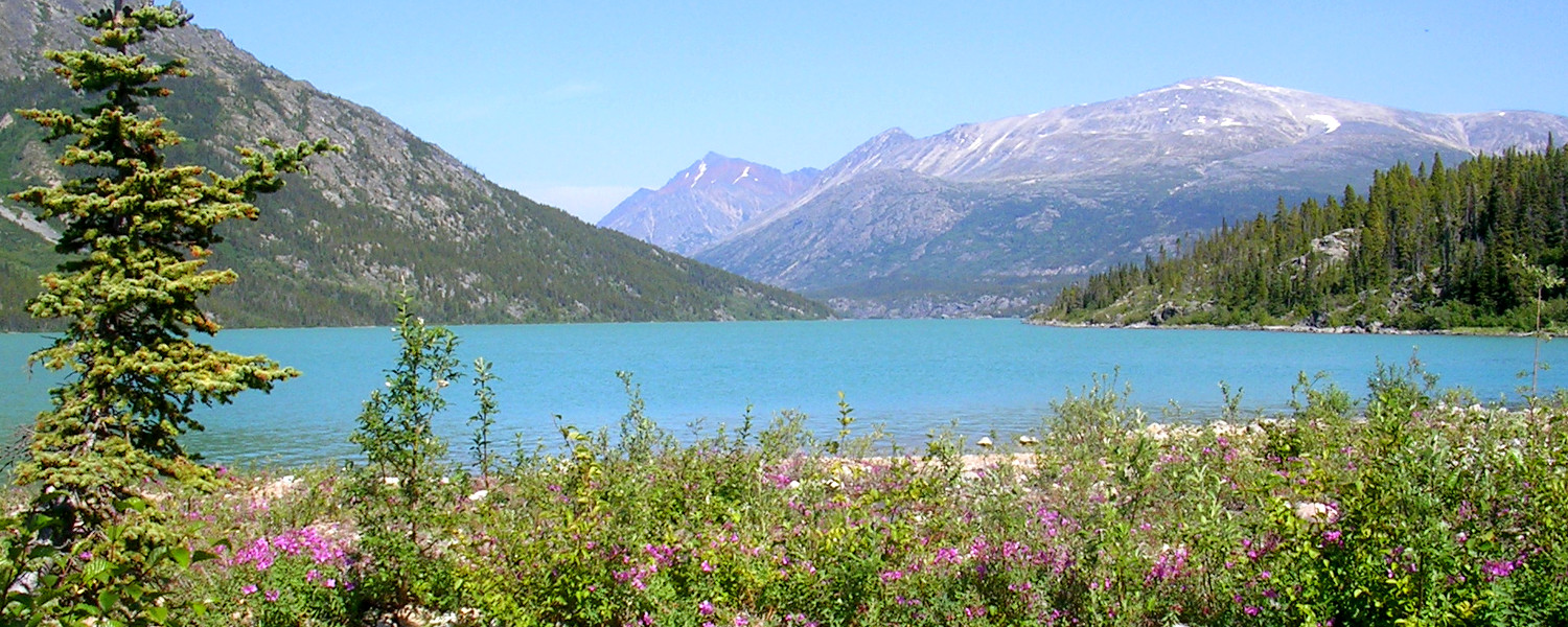 Following in the footsteps of stampeders on the Chilkoot trail looking for gold and gorgeous scenery